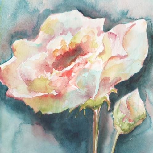 watercolor-white-camelia-1