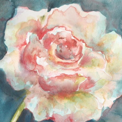 watercolor-white-camelia-3