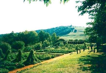 virginia-countryside-1